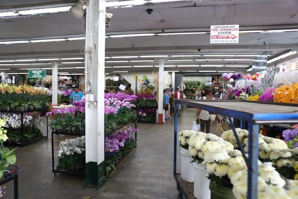 How to Shop at the Los Angeles Flower Market 3